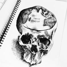 SKULL STUDY / pen sketch