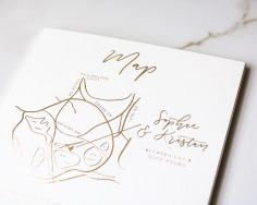 SOPHIE & KRISTAN / gold foil hand illustrated map