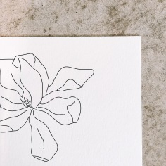 EMMA & GREG / hand illustrated magnolia