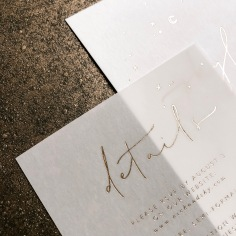 SKYLER & NICHOLAS / gold foil on vellum
