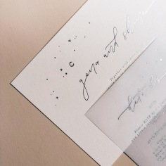 GENA & SHANE / silver foil on pale pink and vellum