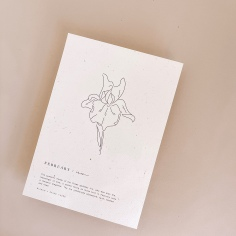 BIANKO x PAIGE TUZEE / custom illustrated and hand lettered birth flower prints. A5 and printed on recycled stock